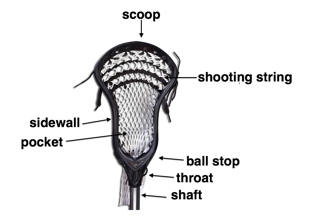 lacrosse women u0026 39 s game info